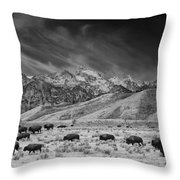 Roaming Bison In Black And White Throw Pillow