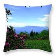 Roan Mountain Rhododendron Gardens Throw Pillow