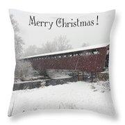 Roann Christmas Throw Pillow