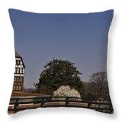 Roanoke Virginia Springtime Cityscape Throw Pillow