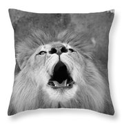Roar  Black And White Throw Pillow