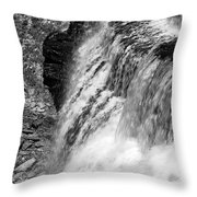 Roar Of The Falls Throw Pillow