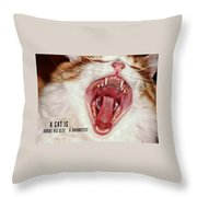 Roar Quote Throw Pillow