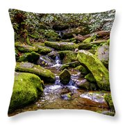 Roaring Fork 2 Throw Pillow