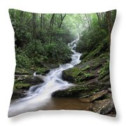 Roaring Fork Falls Throw Pillow