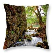 Roaring Spring Throw Pillow