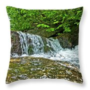 Roaring Through The Woods Throw Pillow