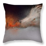 Roasting Chestnuts Throw Pillow