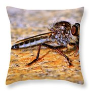 Robber Fly 001 Throw Pillow