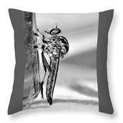 Robber Fly - Black And White Throw Pillow