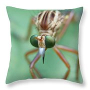 Robber Fly Throw Pillow