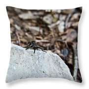 Robber Fly Sitting Throw Pillow