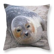 Robby Throw Pillow