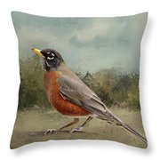 Robin Abstract Background Throw Pillow