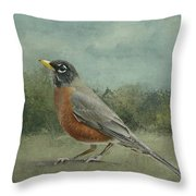 Robin Abstract Background With Texture Throw Pillow