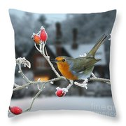 Robin And Rose Hips Throw Pillow