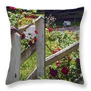 Robin And Roses - Gently Cross Your Eyes And Focus On The Middle Image That Appears Throw Pillow