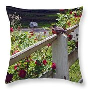 Robin And Roses Throw Pillow