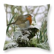 Robin And Snowdrops Throw Pillow