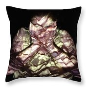 Robin Throw Pillow by Arla Patch