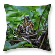 Robin Chicks In Nest. Throw Pillow