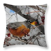 Robin Eating A Berry Throw Pillow