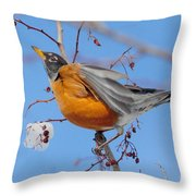 Robin Eying Berries Throw Pillow