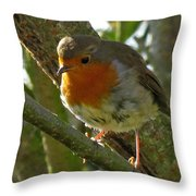 Robin In A Tree Throw Pillow