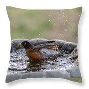 Robin In Bird Bath New Jersey  Throw Pillow