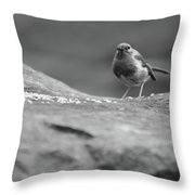 Robin In Black And White Throw Pillow