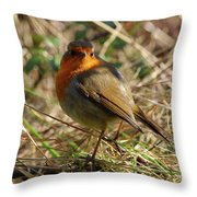 Robin In Hedgerow 2 Inch Donegal Throw Pillow