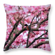 Robin In Magnolia Tree Throw Pillow