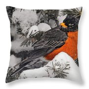 Robin In March Snowstorm In Michigan Throw Pillow