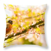 Robin In Spring Blossom Cherry Tree Throw Pillow