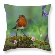 Robin In Spring Wood Throw Pillow