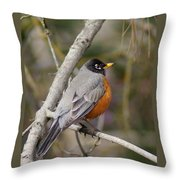 Robin In Tree 2 Throw Pillow