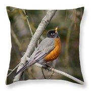 Robin In Tree Throw Pillow