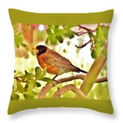 Robin In Tree Throw Pillow