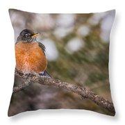 Robin In Winter Throw Pillow