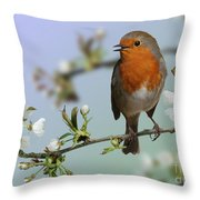 Robin On Cherry Blossom Throw Pillow