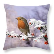 Robin On Cotoneaster With Snow Throw Pillow