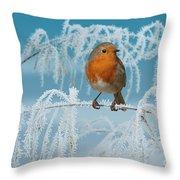 Robin On Frosty Grass Throw Pillow