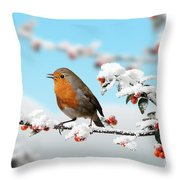 Robin On Snowy Cotoneaster Throw Pillow