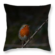 Robin On The Branch Throw Pillow