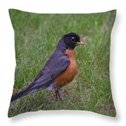 Robin On The Lawn Throw Pillow