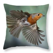 Robin On The Wing Throw Pillow
