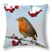 Robin On Winter Cotoneaster Throw Pillow