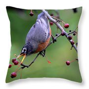 Robin Reaching For Berry Throw Pillow
