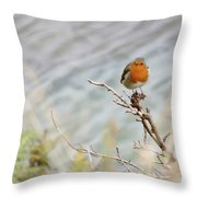 Robin Resting Throw Pillow