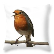 Robin Singing On Branch Throw Pillow